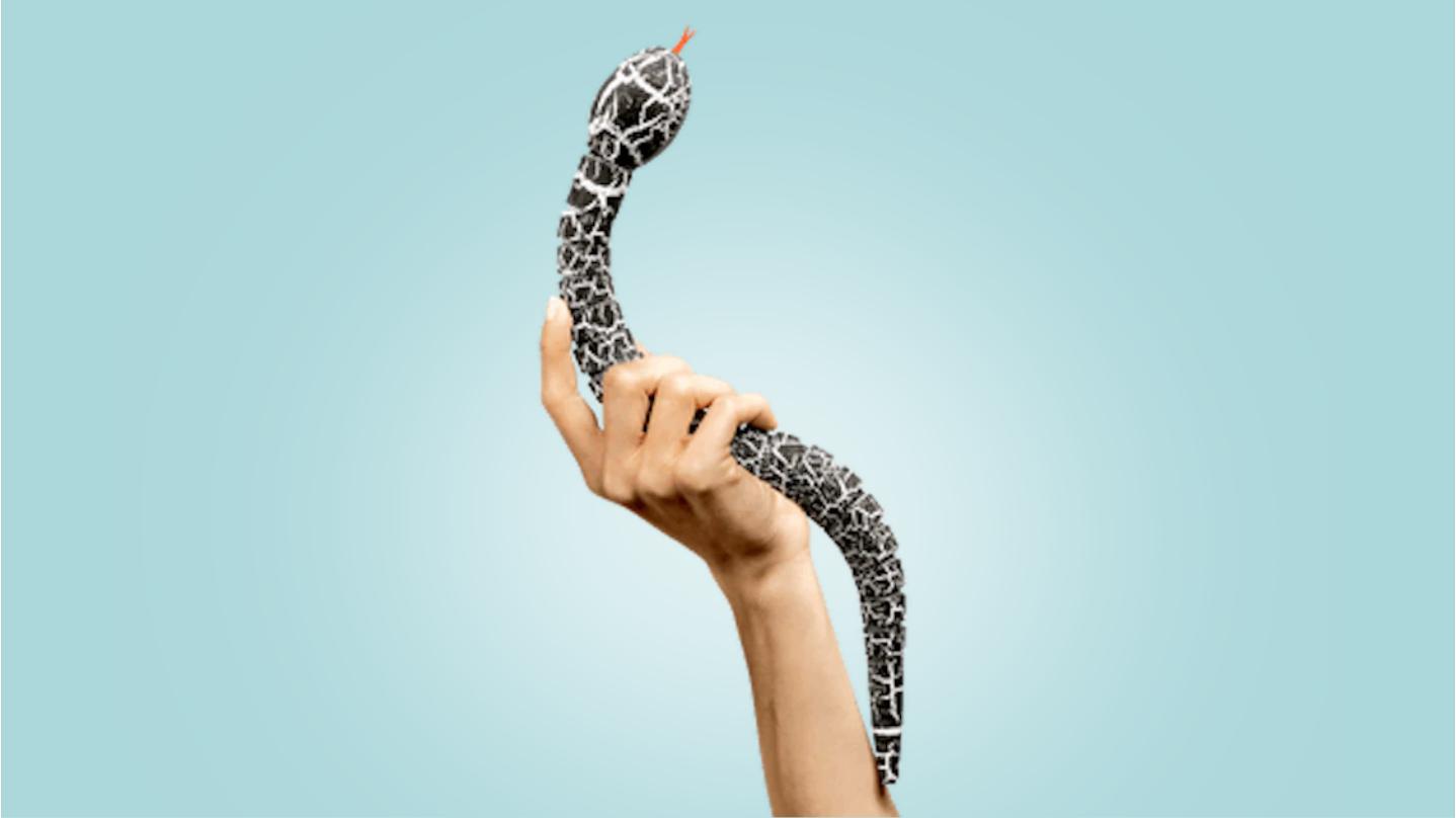Développeur Python